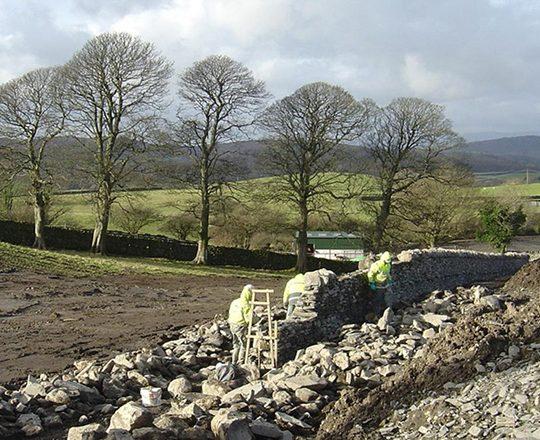 Services - Landscape Management